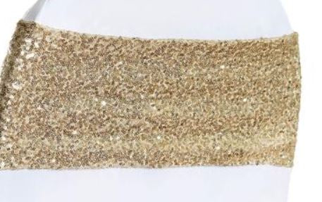 Champagne Sequin Spandex Band