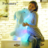 35/50cm Kawaii Luminous Teddy Dog Plush Doll Toys Colorful LED Glowing Puppy Dog Stuffed Toys Children Kids Birthday Gift - efair Best spare parts online shopping website