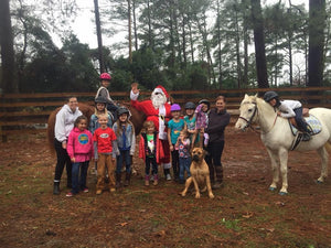 Christmas Horse Camp