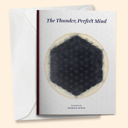 The Thunder, Perfect Mind