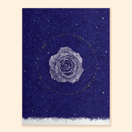 Rose Nocturne Art Print