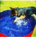 【Last Day Promotion 50% OFF】Foldable Pet Bathing Pool