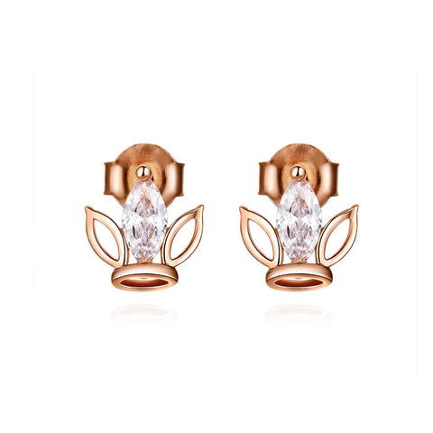 925 Sterling Silver Plated Rose Gold Zircon Stud Earrings Guard Earrings