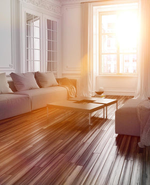 Make Your Home Shine: Maximize Your Light!