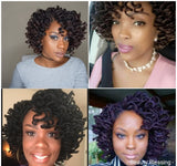 WIG Ledisi Inspired Sister Locs Curly Premium Fiber Lace Front Wig Braids