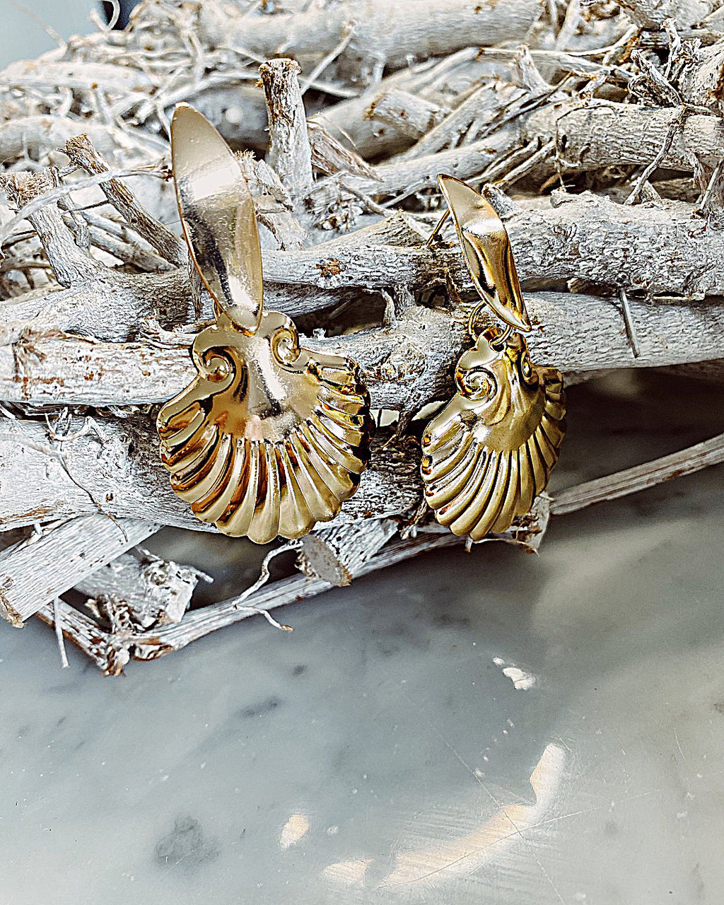 Shell scallop earrings