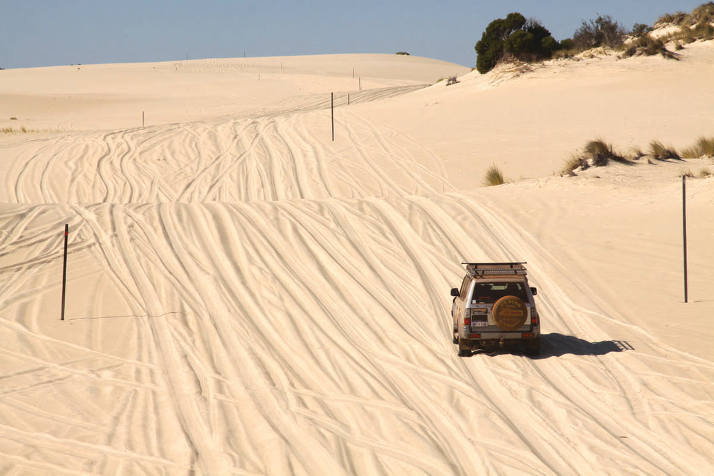 In the Yeagarup Dunes - D'Entrecasteaux National Park - WA