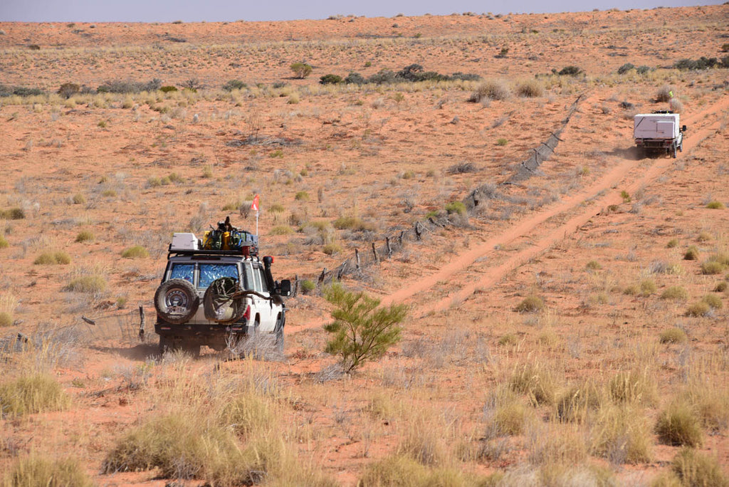 The route follows the old Rabbit Proof Fence for some way, driving the Madigan Line