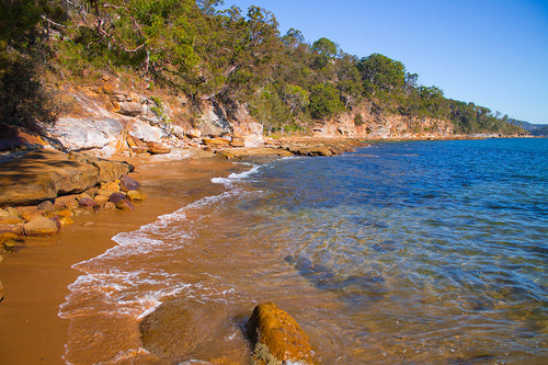 Ku-Ring-Gai Chase National Park KC12