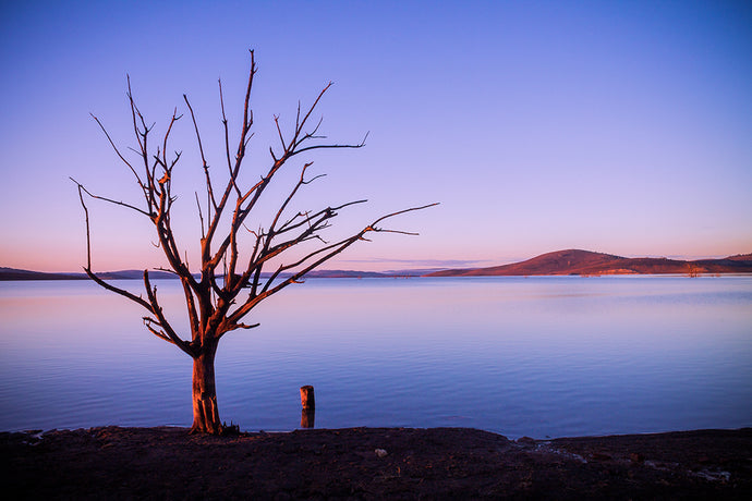 Lake Eucumbene | Snowy Mountains | Lake | Sunrise | Landscape Photography | Wall Art