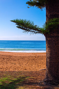 Palm Beach | Sydney | Ocean | Sand | Landscape Photography | Wall Art