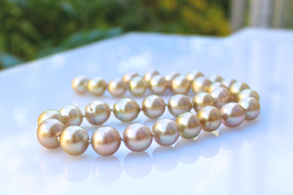 watching sunset golden south sea collar necklace
