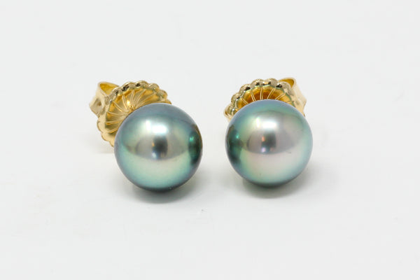 blue green Tahitian pearl stud earrings