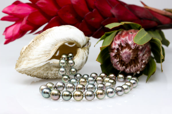 winter to spring Tahitian pearl necklace