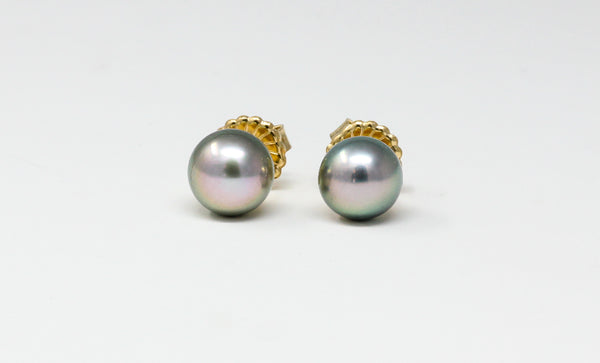 silver green rose overtone 10.5mm Tahitian pearl studs