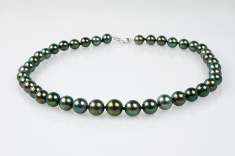 peacock tahitian pearl necklace