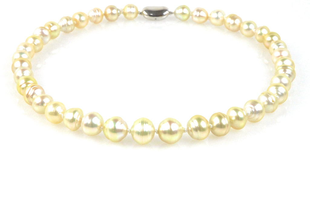 moonlight champagne south sea pearl necklace