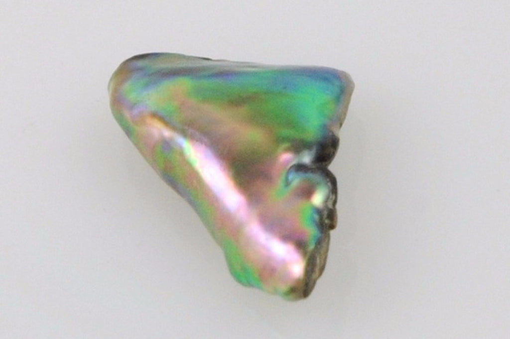gem quality natural wild abalone pearl