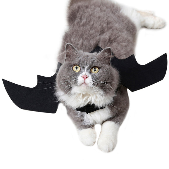Hoomall Bat Cat Costume for Halloween
