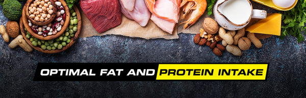 Optimal Protein and Fat Intake