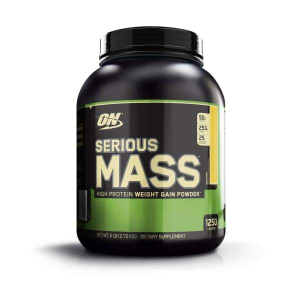Optimum Nutrition Serious Mass Gainer - Protein Powders