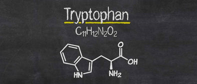What is Tryptophan?