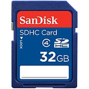 SanDisk 32 GB Secure Digital High Capacity (SDHC) - Class 4 - 1 Card