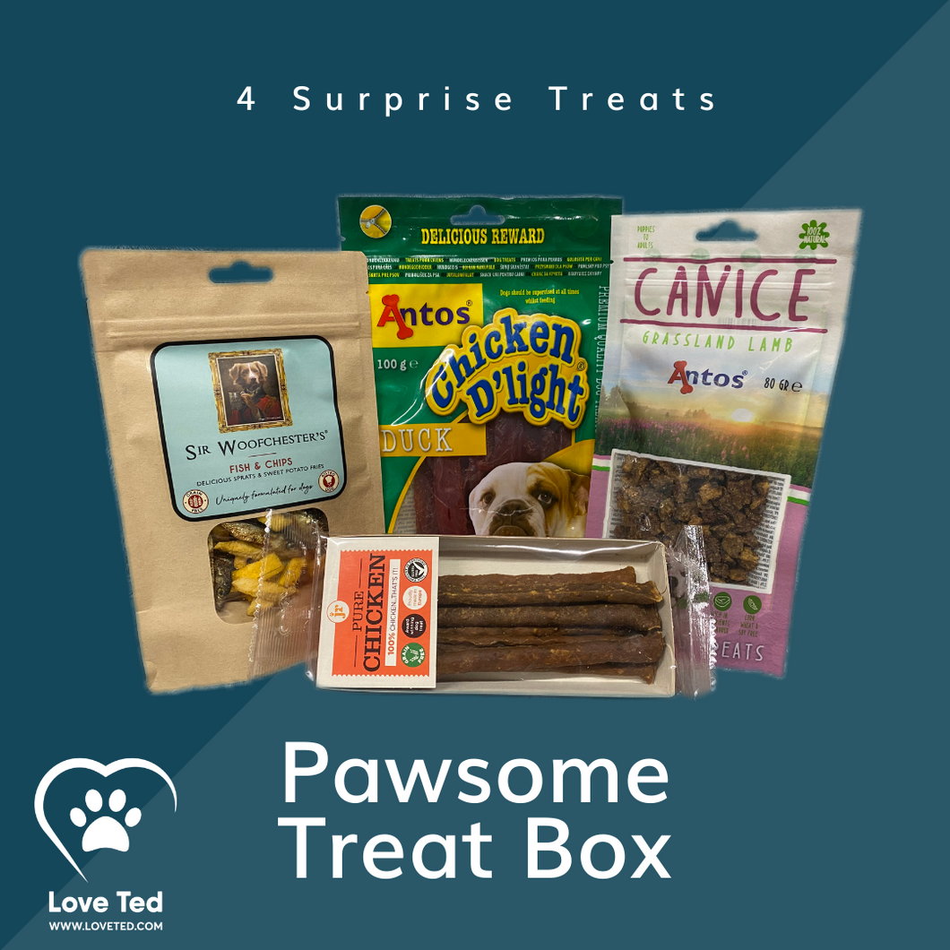 Pawsome Treat Box - Love Ted