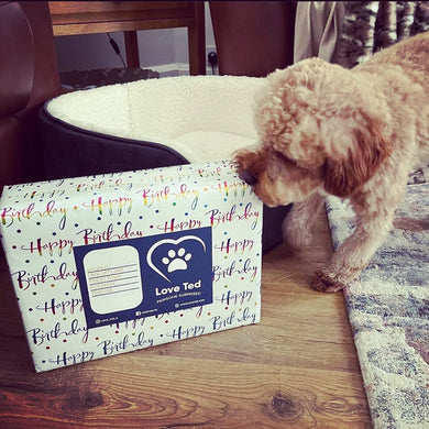 Pawsome Birthday Box - Love Ted