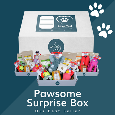 Pawsome Surprise Box - Love Ted