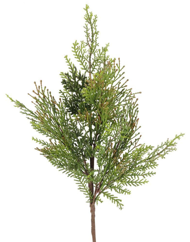 "2""L Juniper-Incense Cedar Berry Spray"