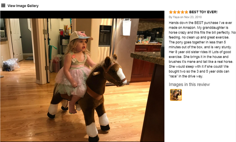 ponycycle amazon review