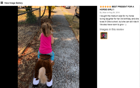 ponycycle review
