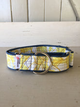 Load image into Gallery viewer, Rescued collar - Yellow (Large)