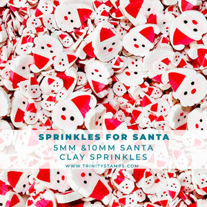 Sprinkles For Santa- Clay Sprinkles Mix