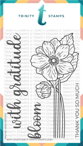 With Gratitude 4x6 Stamp Set