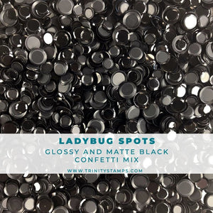 Ladybug Spots: Shiny and Matte Black Confetti Mix