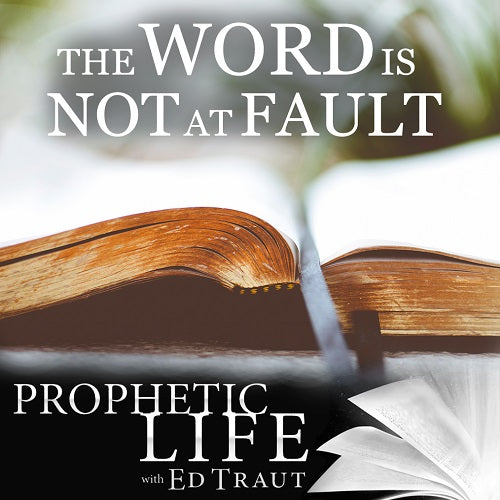 The Word is Not at Fault (Digital Download)