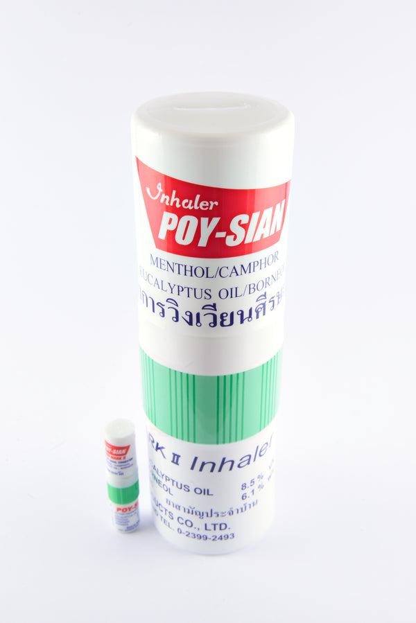 Poy-Sian Money Box - PARACOSMIC