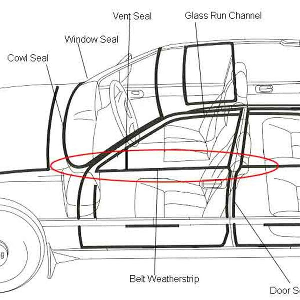 Corvette - Belt/Door Outer Weatherstrip Kit : C5 1997-2004 Coupe, Convertible, Z06-Door Weatherstrip-Fairchild Industries