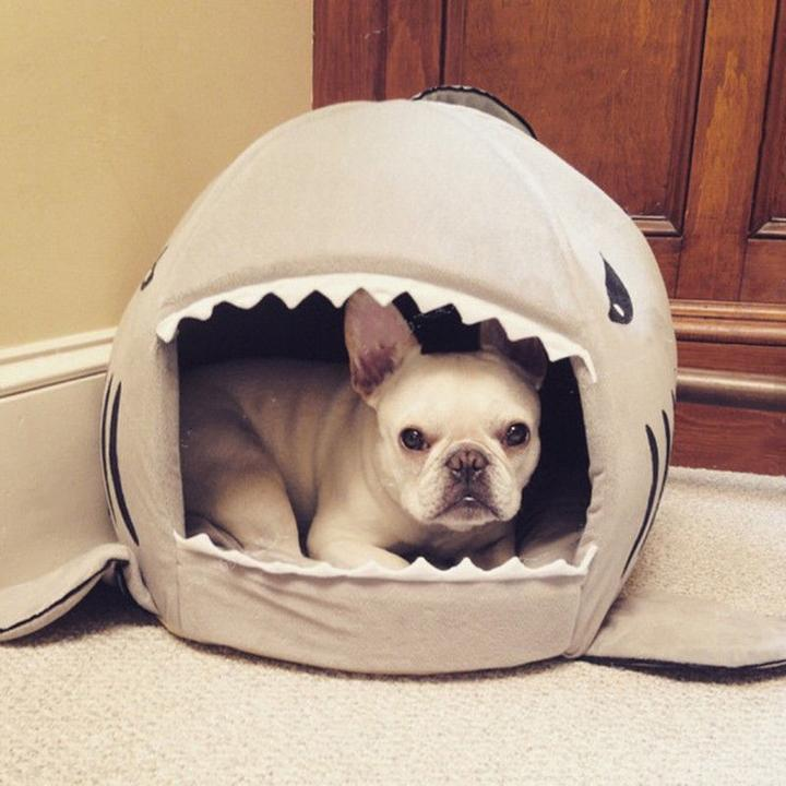 French Bulldog Shark Bed