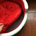 French Bulldog Watermelon Bed