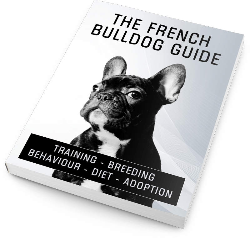 The French Bulldog Guide eBook