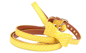 French Bulldog Bow Tie Collar & Leash
