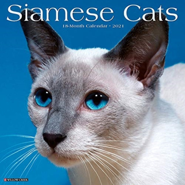 50% OFF Siamese Cats 2021 Wall Calendar