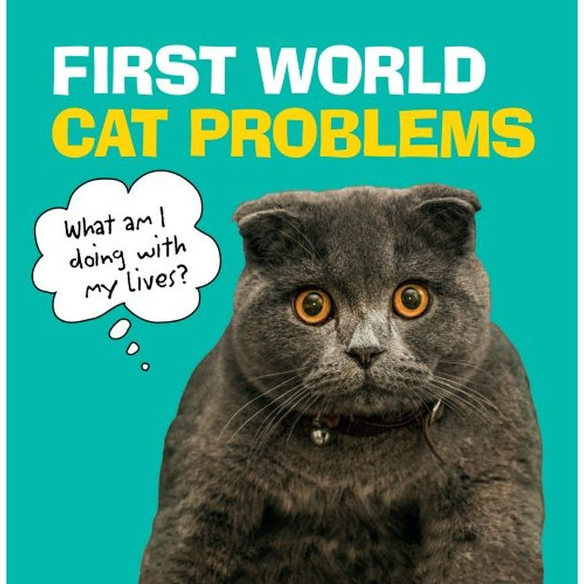 First World Cat Problems Funny Cat Gift Book