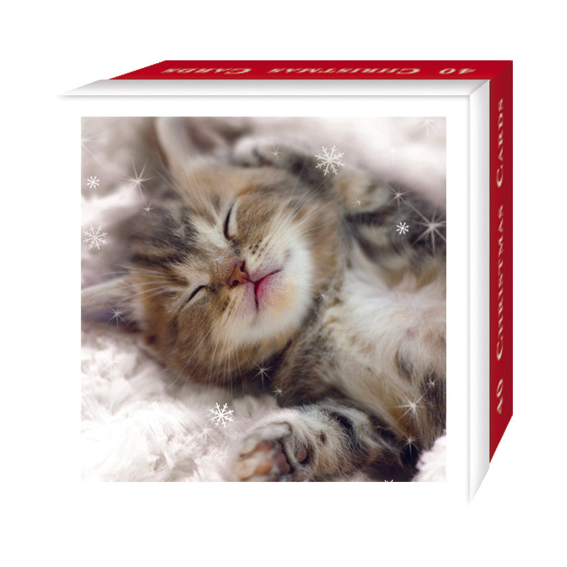 Christmas Cats Bumper Christmas Card Box