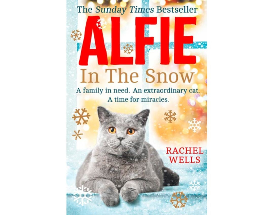 Alfie In The Snow Paperback