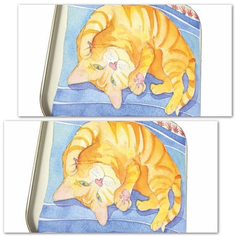 Set of 2 Hinged Ginger Cat Tins