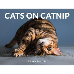 Cats on Catnip Book
